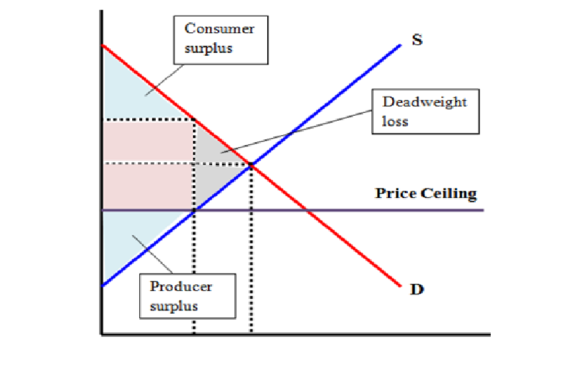 A Binding Price Ceiling Causes